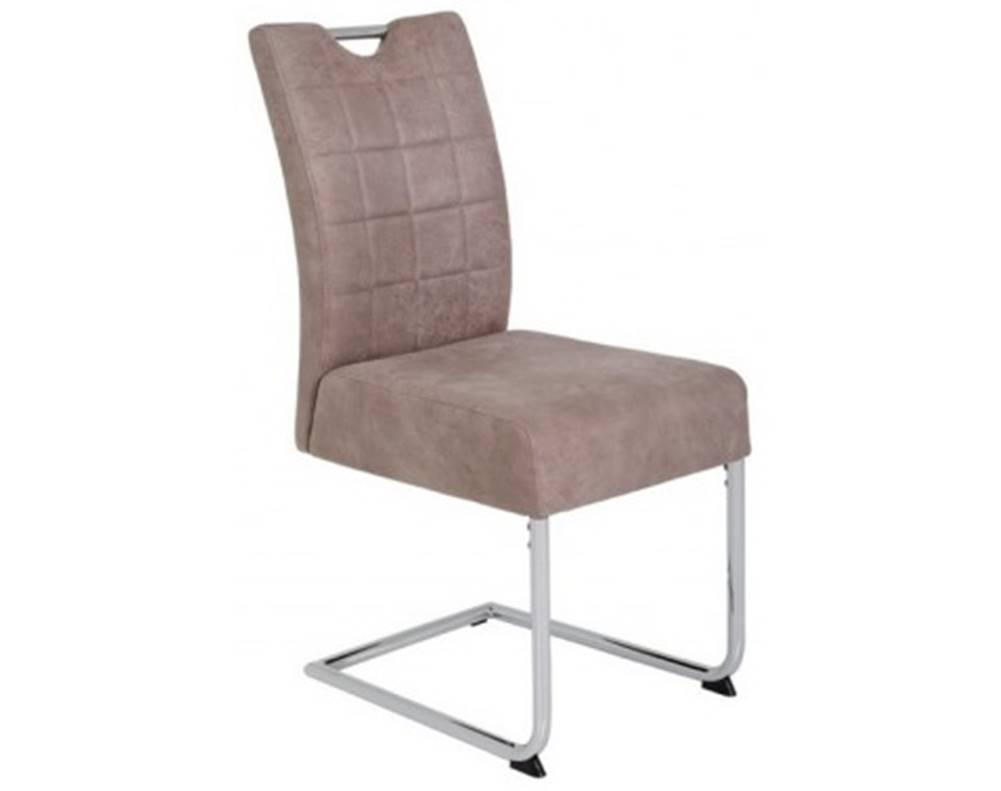 ASKO - NÁBYTOK Jedálenská stolička Denise 2, béžová vintage optika koža%