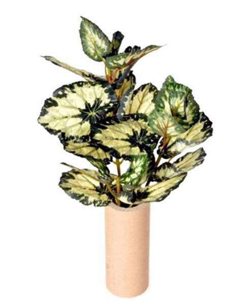 Zelená váza Berlinger Haus