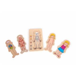 Drevená hračka Legler Anatomy Girl